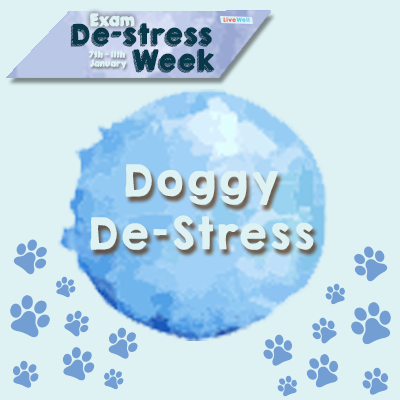 Exam De-Stress: Doggy De-stress